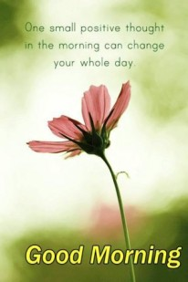 positive-thoughts-good-morning-quote-319x480