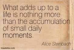 Quotation-Alice-Steinbach-moments-life-Meetville-Quotes-78270